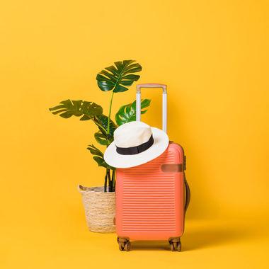 Купить качественный чемодан недорого